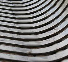 Wet Seat by John Dunbar