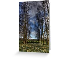 Daffs and Trees  Greeting Card