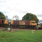 Cane Train QLD by Djinni62