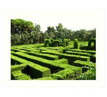 Barcelona's Garden Labyrinth Art Print