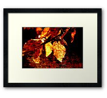Leaf and Light Abstract Framed Print