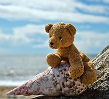 Beachcomber Teddy by Susie Peek
