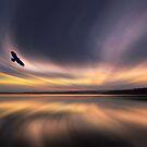 Golden Eagle Dawn by David Alexander Elder by David Alexander Elder