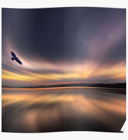 Golden Eagle Dawn by David Alexander Elder Poster