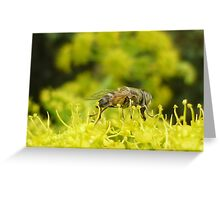 In the land of the giants Greeting Card