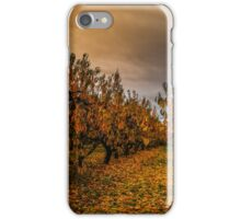 Fall Colors #44567 iPhone Case/Skin