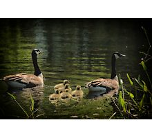 Family Outing Photographic Print