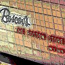 """Boscov's"" The Boston Store  by Gail Jones"