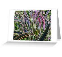 And More Monkey Grass Greeting Card