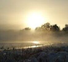 Pond with fog & sun by Melissay
