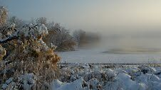 Pond with fog after a snowstorm by Melissay