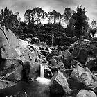 Mclarens Autumn Gorge by Ken Wright