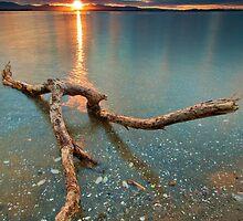 Kaimai Sun Strike by Ken Wright