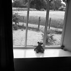 Country window by jamesnortondslr
