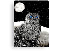 Spice Owl  Canvas Print