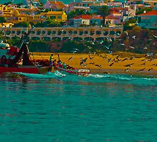 colour boat and seagulls by EGGY6198