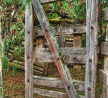 Old Farm Gate by Eve Parry