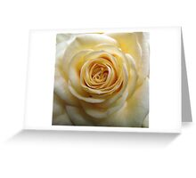 Sweet Smellin' Rose! Greeting Card