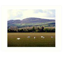 Wetlands Wild Geese Art Print