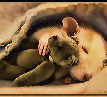 Sleepy Time in Oil by Richard  Gerhard