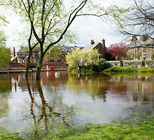 Floodwater by John (Mike)  Dobson