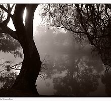 Foggy Reflections on the Wimmera River by Vicki73