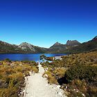 Beautiful Tasmania - the track to the boatshed by georgieboy98