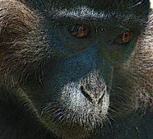 Langur Monkey's Epic Chops Sticker