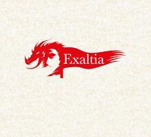 Exaltia Guild Wars 2 Guild Hoodie