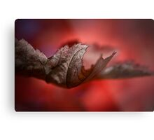 Leaves of Autumn I Metal Print