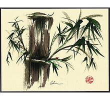"""Gentle Soul"" - Little ladybug in her bamboo haven Photographic Print"