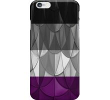 Geometric Ace Pride iPhone Case/Skin