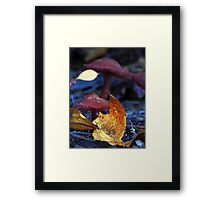 Mushroom Kingdom (4322) Framed Print