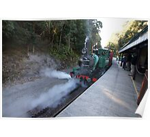 Beautiful Tasmania - letting off steam Poster