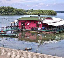 Pink floating restaurant by olivera kenic