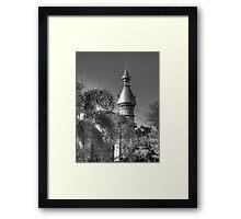 Tampa University Framed Print