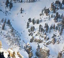 Remnants of Avalanche by Robert Noll