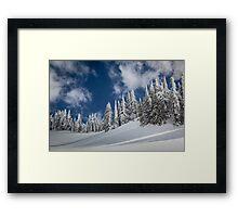 Mazama Trees Framed Print