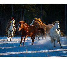 Chasing Horses Photographic Print