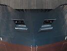 Shipshape by awefaul