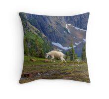 Hidden Landscape Throw Pillow