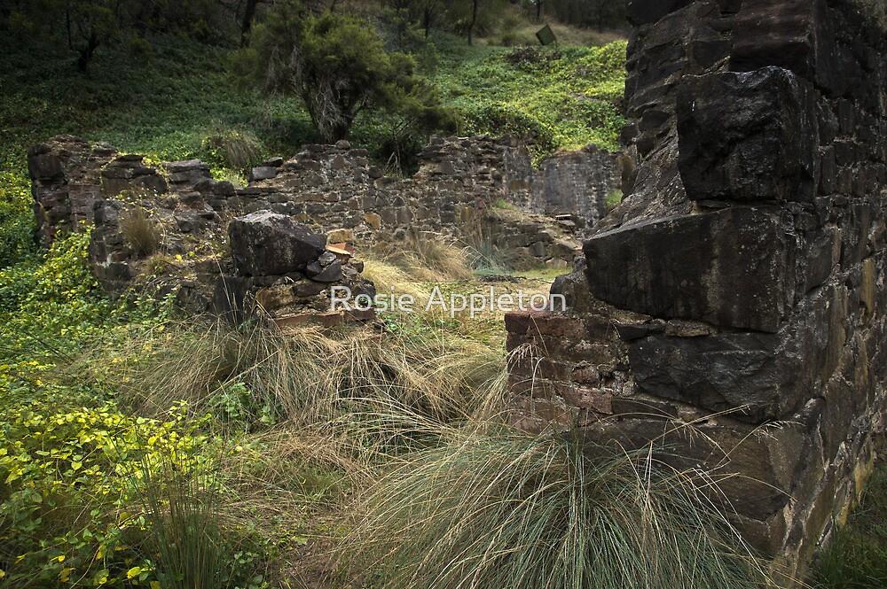 Old Mill by Rosie Appleton