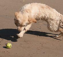The interception, Bannow beach, County Wexford Ireland by Andrew Jones
