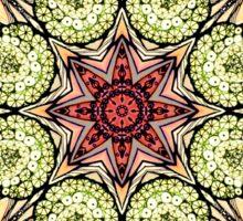 abstract red star hand drawn and  kaleidoscope mandala Sticker