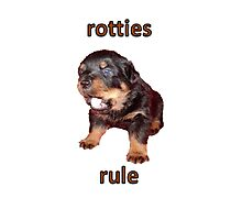 Rotties Rule Photographic Print