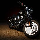 Hot Harley by Harry Purves