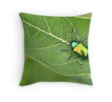 Me and My Canon S5IS Mirrored on a Japanese Beetle Throw Pillow
