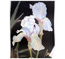 """Blue Iris"" Poster"