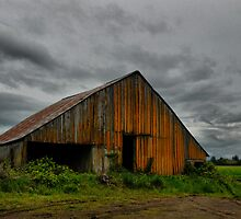 Beauty In Its Old Age by Charles & Patricia   Harkins ~ Picture Oregon
