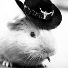 Wild Western Pig by Jennie Gardiner